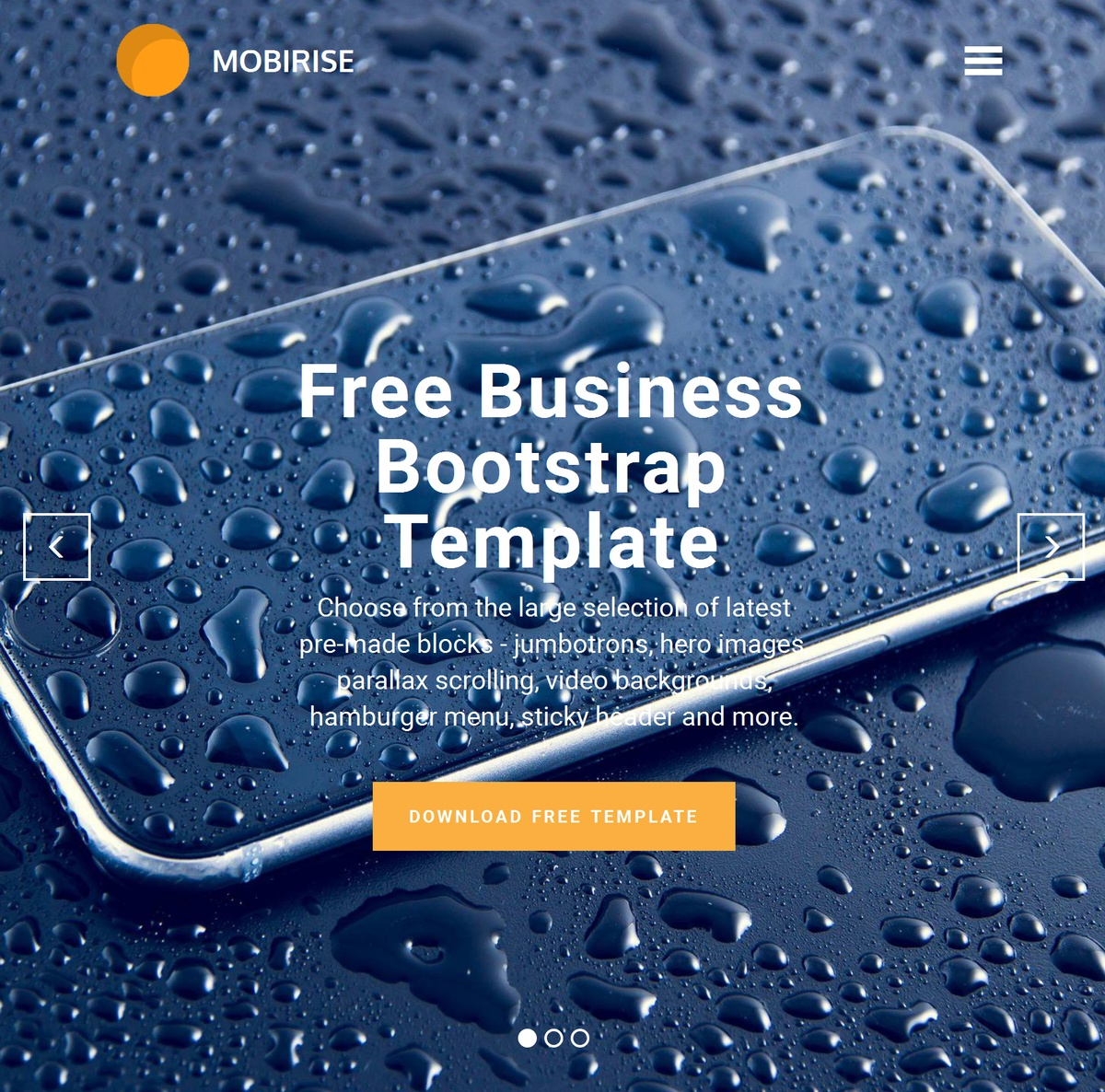 Bootstrap Responsive Web Templates Themes Extensions